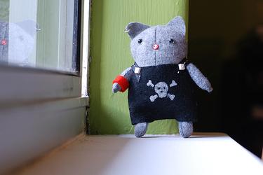 Pirate_kitty