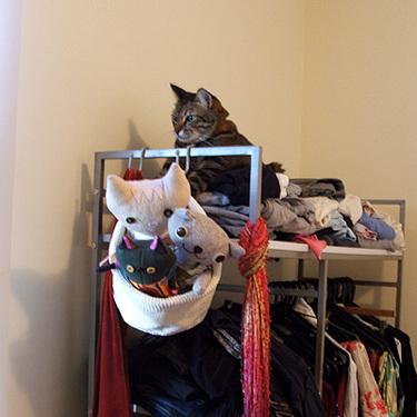 Spud_on_wardrobe